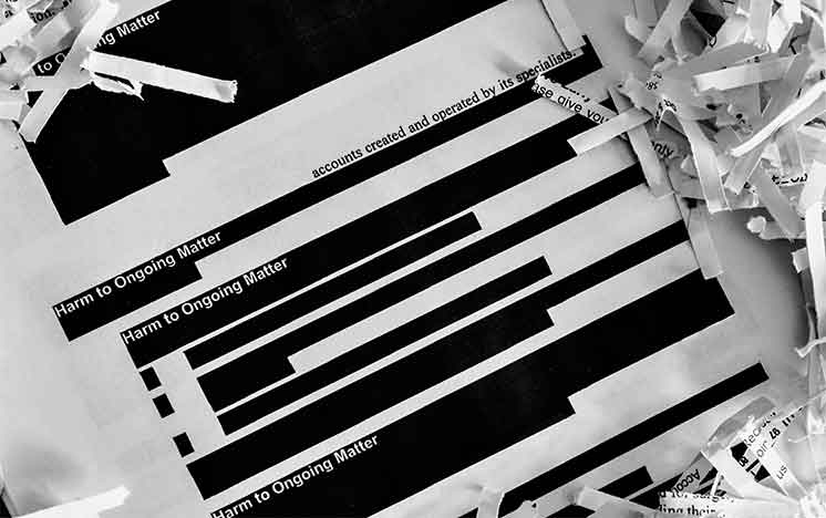 Redacted shredded documents kept safe from data breaches by Didlake Imaging's document management services.